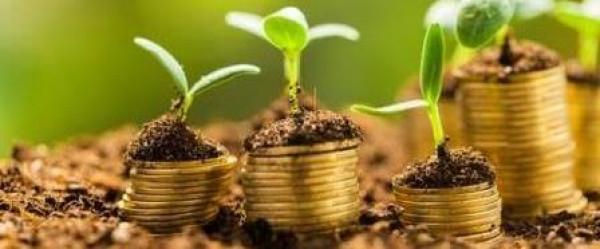 Pensioenfonds Gasunie: nét even anders